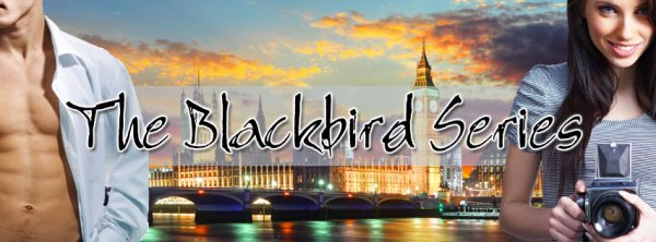 BlackbirdSeriesBanner