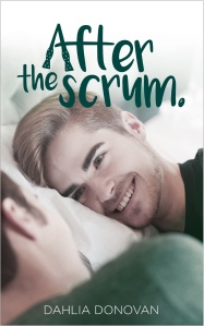 76062-after_scrum_frontcover