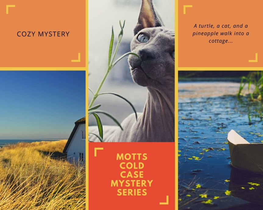 Motts COld Case Mystery Series
